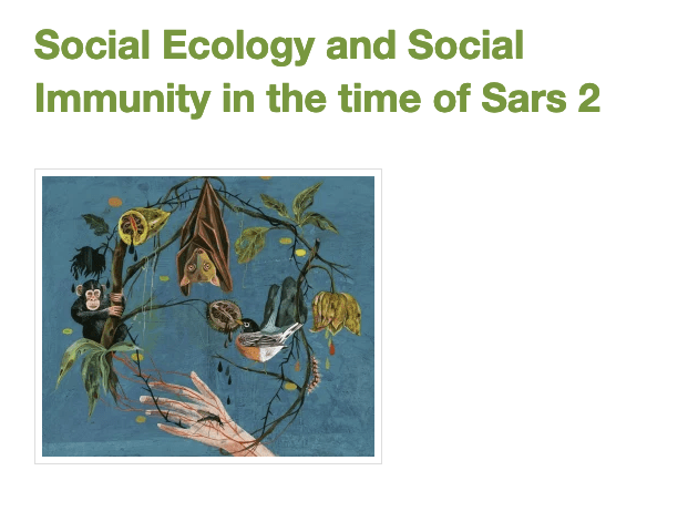Social Ecology and Social Immunity in the time of Sars 2